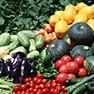 農業経済学の分野
